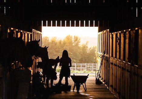 equestrian-barn-silhouette