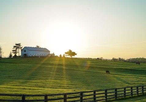 farm-sunlight